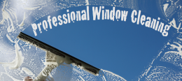 Mobile Clean Window Cleaning Services